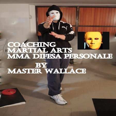 Coaching on line  martial arts-self defense-boxe-ufc-mma-lotta