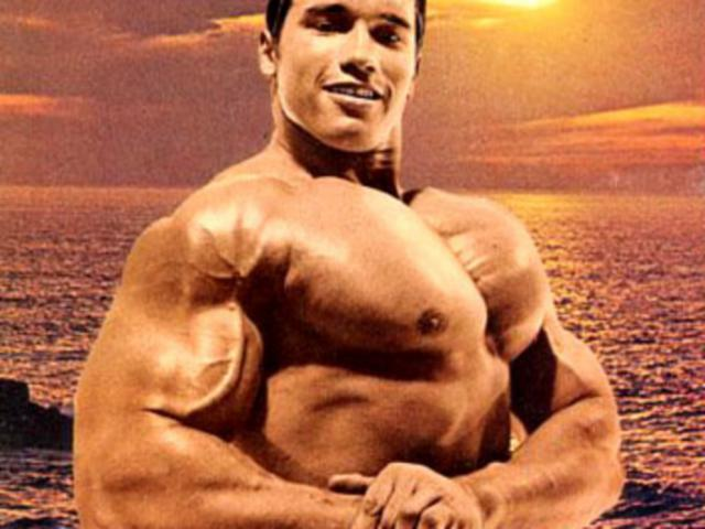 Body building construction.. Arnold docet