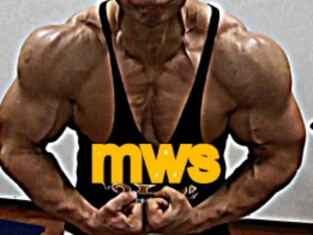 bodybuilding workout program by master wallace