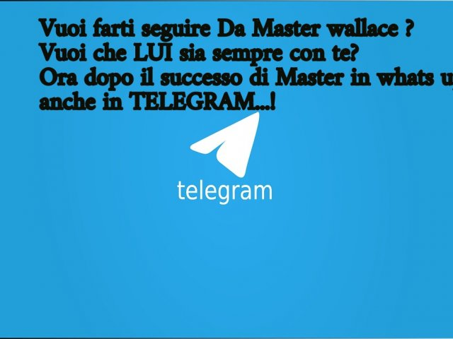 Coaching on line TELEGRAM ora puoi avere il maestro sempre con te