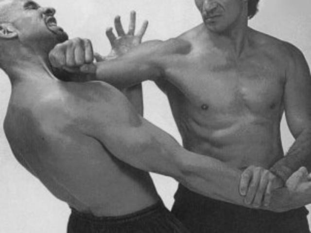 muscle street defence 2 ( wing tsun inside)