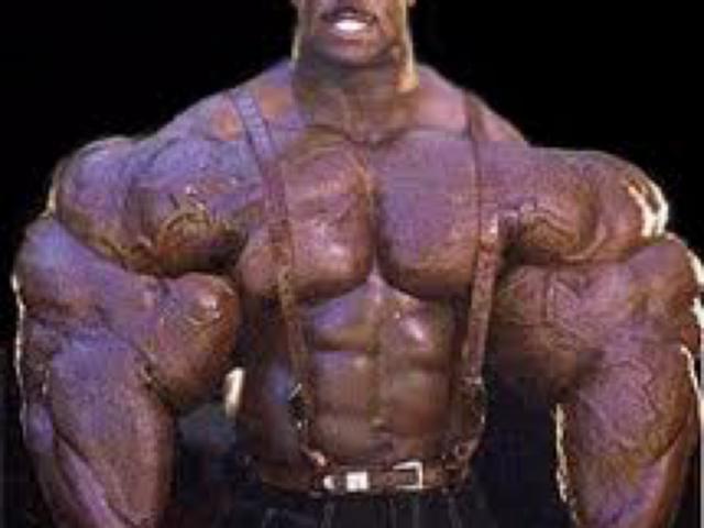 integratori steroidi naturali