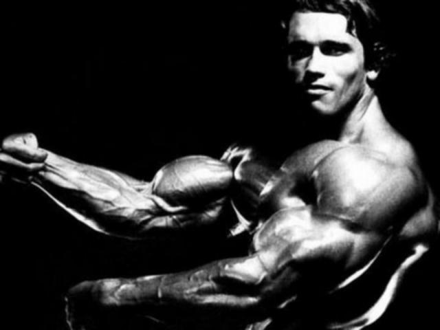 palestra body building arnold