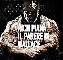 Rich piana e i folli emuli italiani VIDEO
