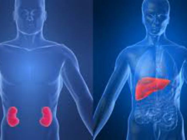 Antibiotico rocefin a cosa serve