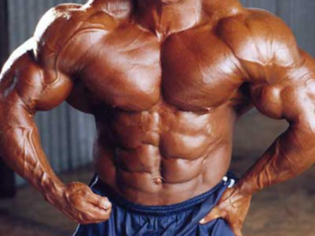 workout mister olympia 2010